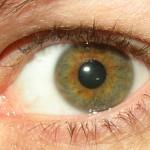 Hazel_eye