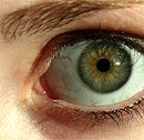 130px-Green_eye_lashes