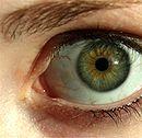 130px-Green_eye_lashes